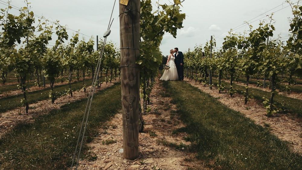 Vineyard - Lehigh Valley - Bride & Groom