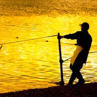 SALMON FISHER