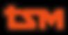 tsmロゴ