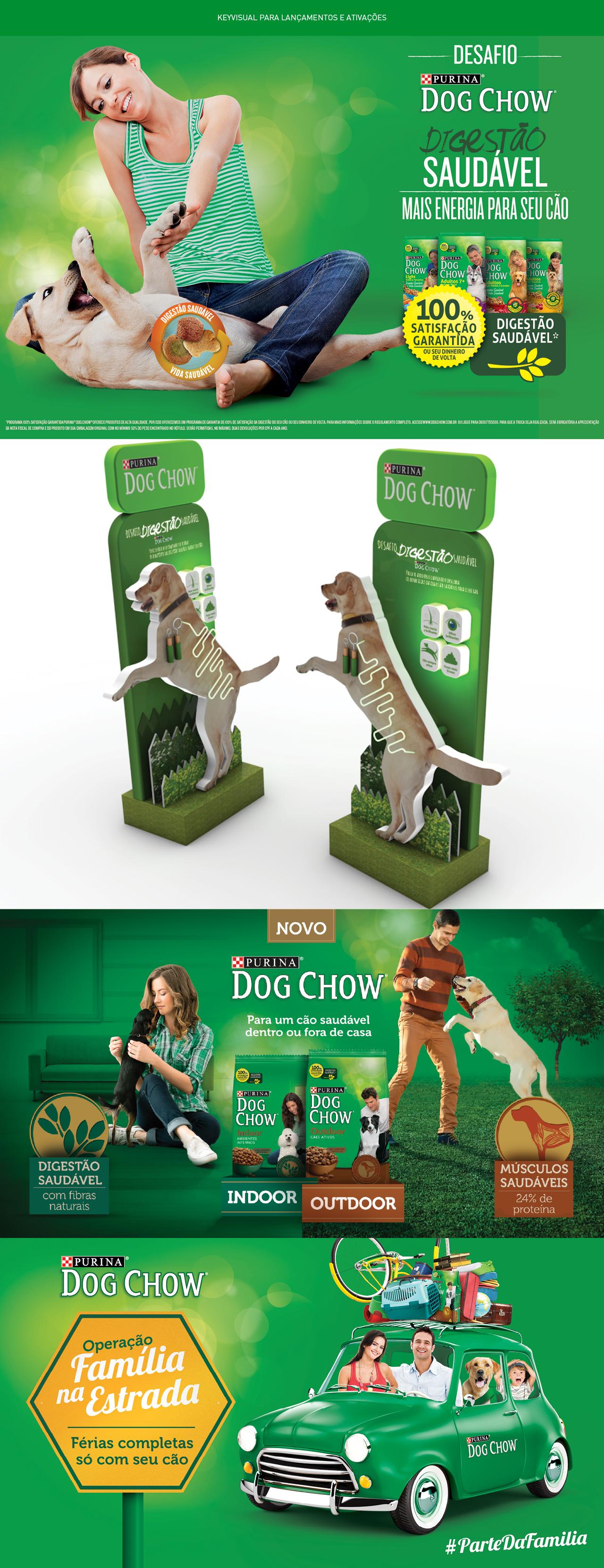 dogs NOVO