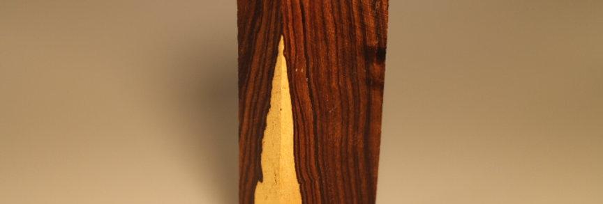 Desert ironwood D1