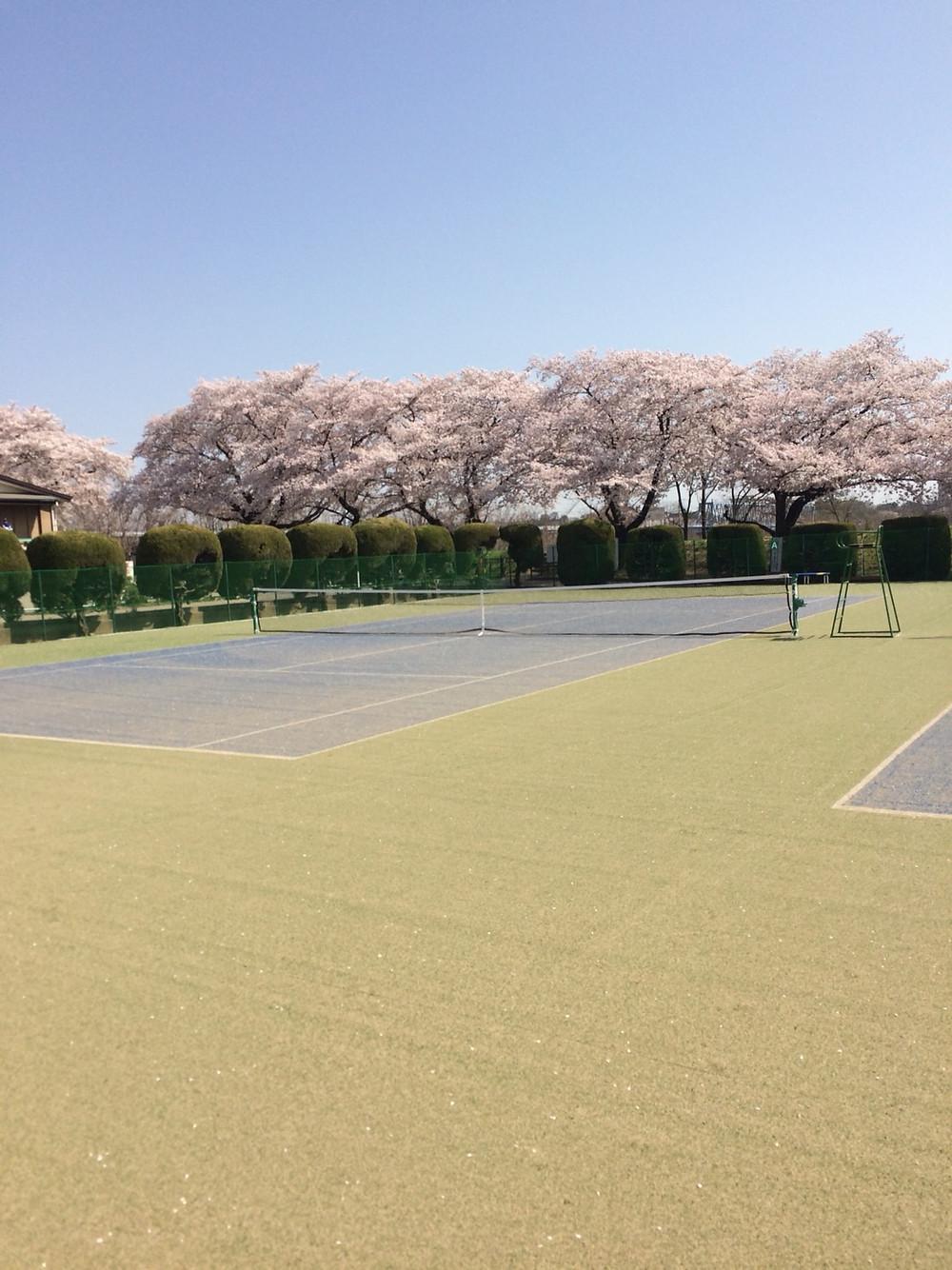 市 天気 あきる野 東京都あきる野市の天気