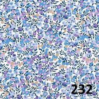 232.jpg
