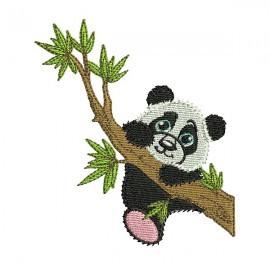 Panda sur branche.jpg