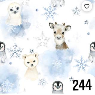 244.jpg