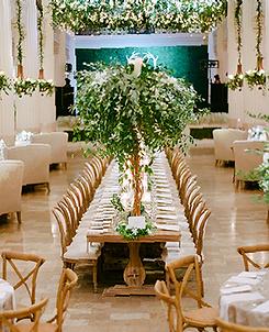 Premium Planning | Belle Events | Wedding Luxury Houston