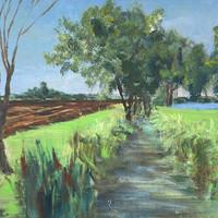Creek on the Farm | 2020