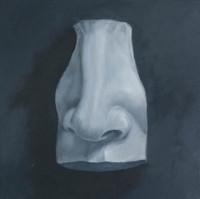 Nose Study