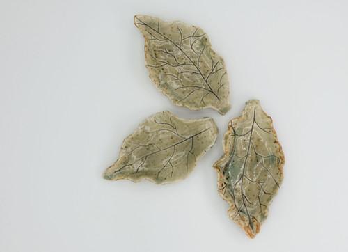 Plate Leaf low res-13.jpg