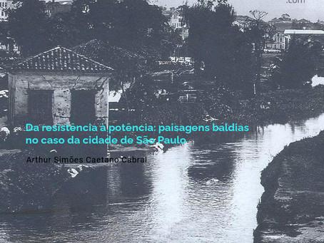 Da resistência à potência: paisagens baldias no caso da cidade de São Paulo