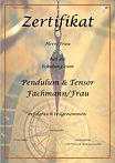 Pendulum & Tensor Fachmann_page-0001.jpg
