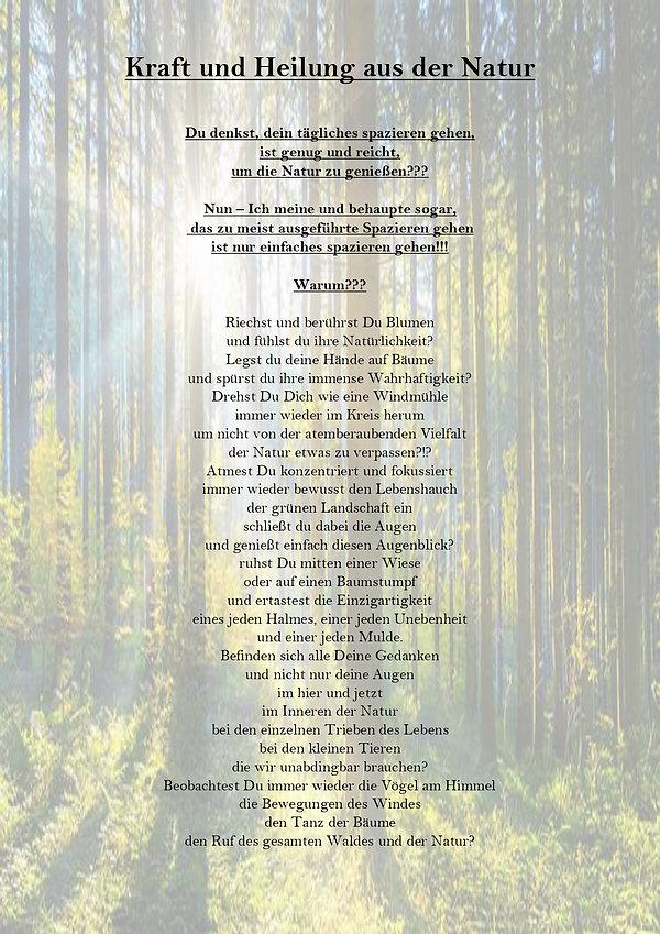 Kraft der Bäume_page-0001.jpg