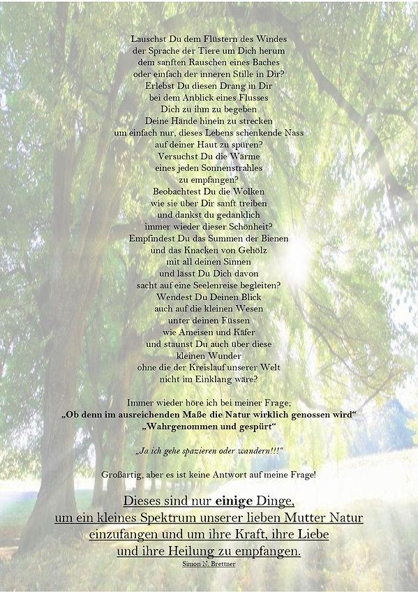 Kraft der Bäume_page-0002.jpg