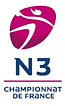 N3.png