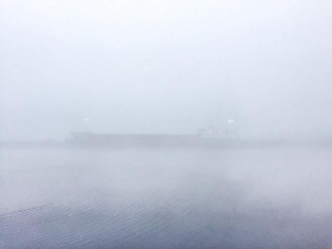 Foggy Limerick