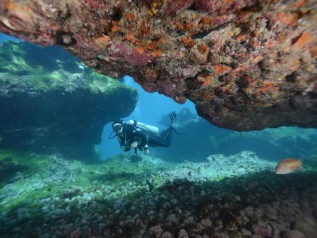 Mergulhos da Vida