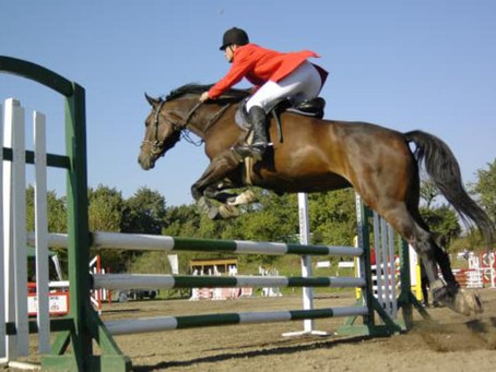 Czech Equestrian Team back at Olympic games for the first time since 1936