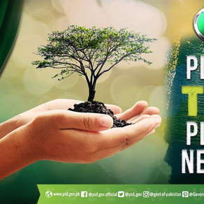 Pakistan has planted over a billion tree