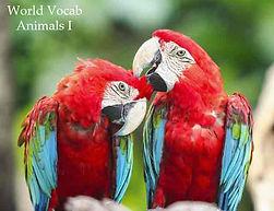 Spanish Vocabulary - Animals