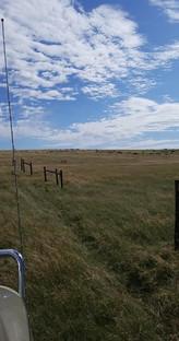 the prairie 1.jpg