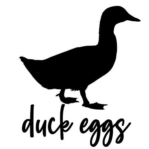 1 Dozen Non-GMO, Non-Soy Duck Eggs