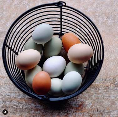 Eggs 2.png