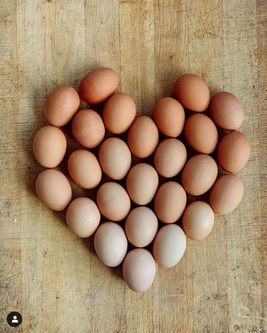 Eggs  1.png