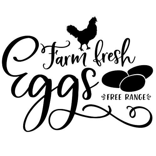 1 Dozen Non-GMO, Non-Soy Chicken Eggs