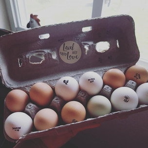 Prairie Opal Eggs.jpg