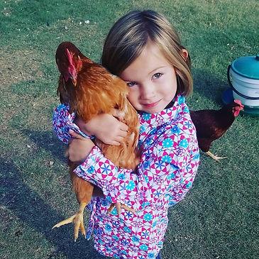Ellie's Chicken Love Bug.jpg
