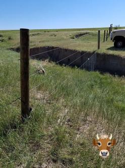 cross fence.jpg