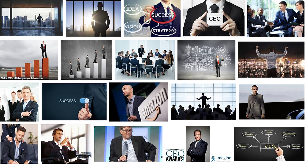successful CEOs, Extraverted male CEO