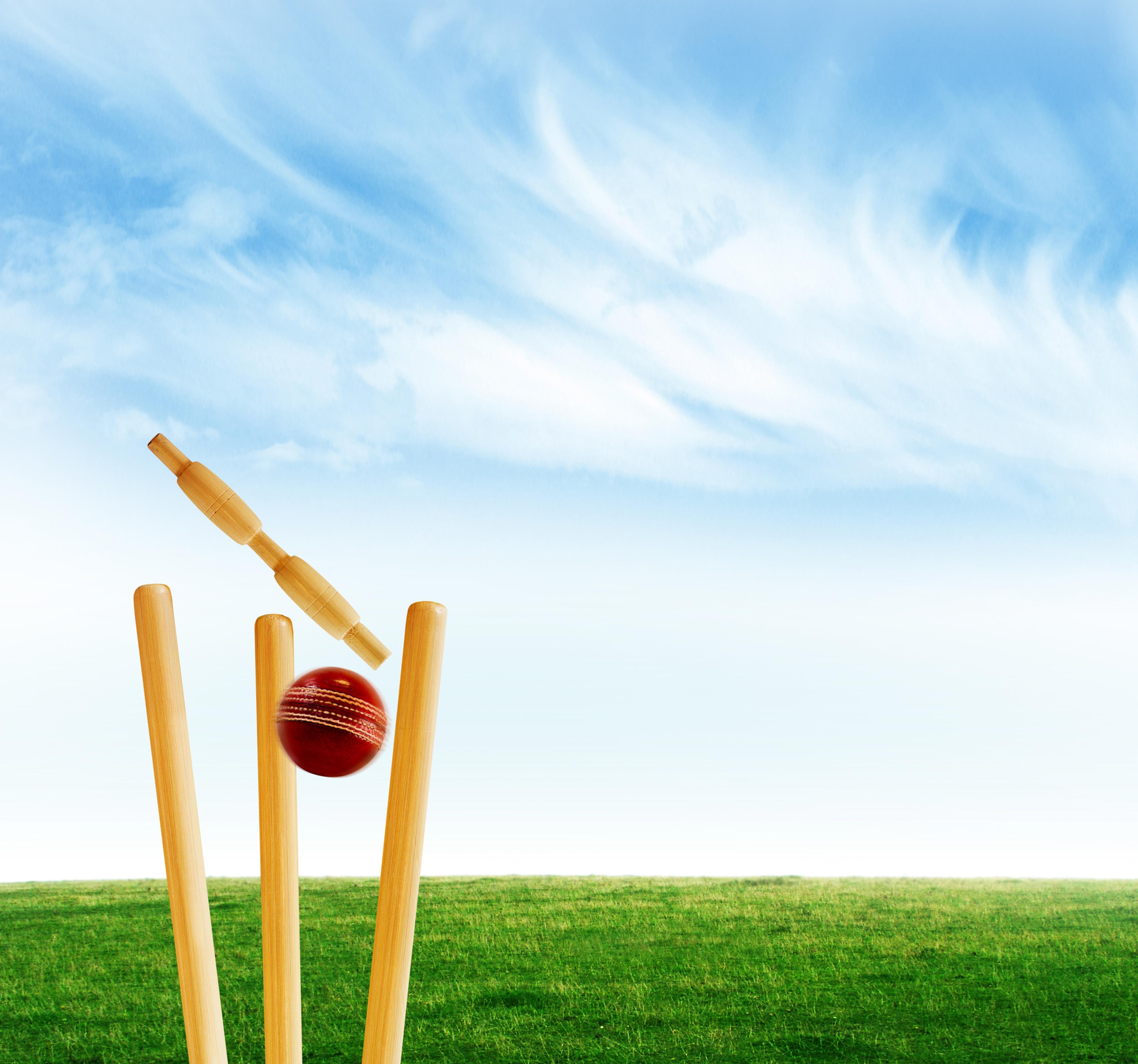 Cricket Net Hire
