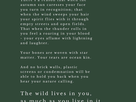 Poetry // The wild lives in you, as much as you live in it