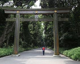 The main torii gate at Meiji Shrine in Tokyo, Japan