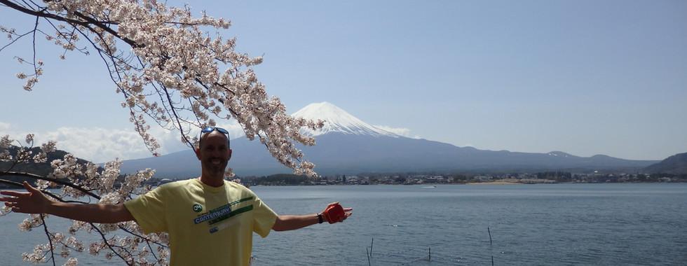 Sakura at Kawaguchi Lake