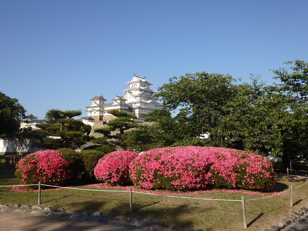 Himeji Castle in the middle of spring