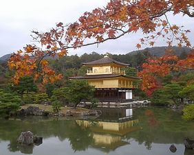 Autumn foliage at the Golden Pavilion in Kyoto, Japan