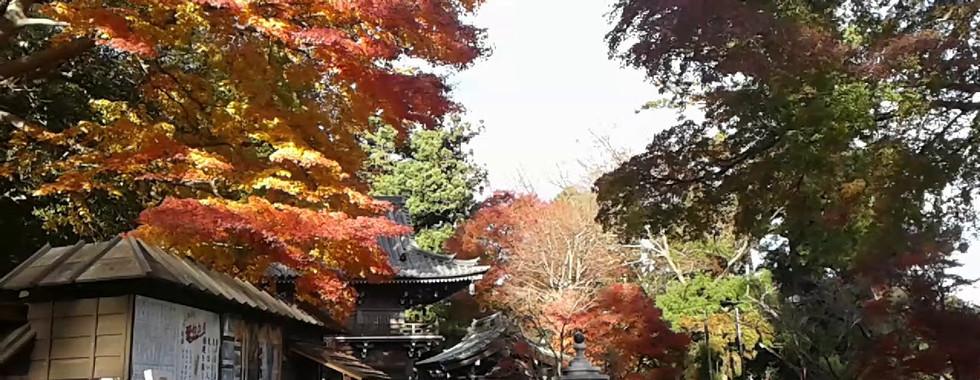 Yakuoin Temple on Mt. Takao