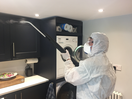 Steam Cleaning  - A Great Solution for Allergies