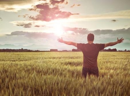 Para qué sirve la gratitud?