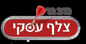 לוגו צלף עסקי נדב בר3.png