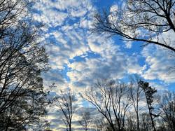 Majesty of clouds