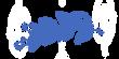 feuille-plumetis-image2.png