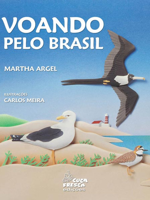 Voando pelo Brasil