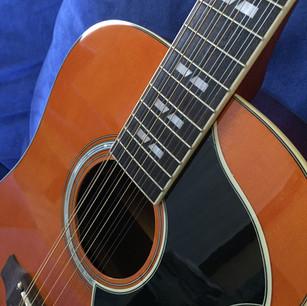 La Eko Ranger XII VR EQ è parte della storia della chitarra acustica. Questa nuova versione è stata migliorata in ogni dettaglio fino a renderla uno strumento moderno e versatile. Tutti i chitarristi dovrebbero averne una.