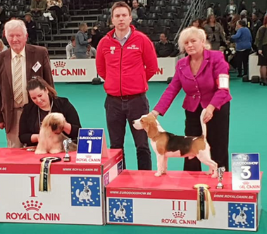3rd Best Pup in Show
