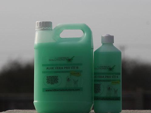 Aloe Vera Pro Vit B Shampoo