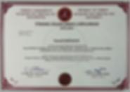 Diploma NEU ismail.png