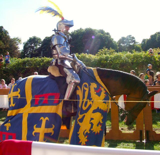 Lucie's Knight.jpg